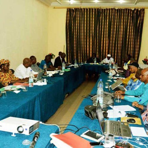 Croix-Rouge malienne – Comité  Internationale Croix-Rouge : Revue  des projets  à mi-parcours pour partir de bon pied